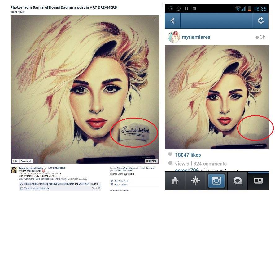 samia dagher illustration myriam fares plaigarism